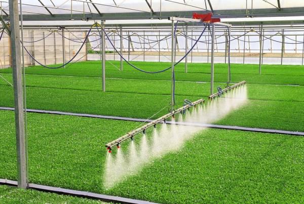 Impianto di irrigazione per serre